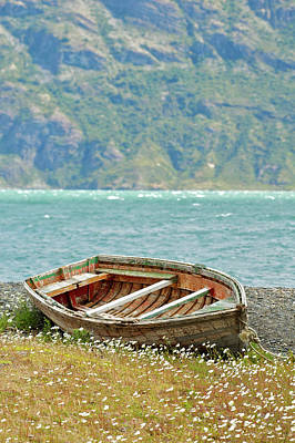 Boat And Wild Flowers By Sea Art Print by M Moraes
