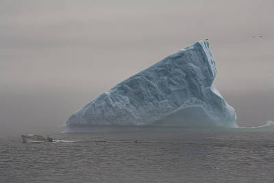 Jul08 Photograph - Boat Passing Iceberg In Fog, Quirpon by John Sylvester