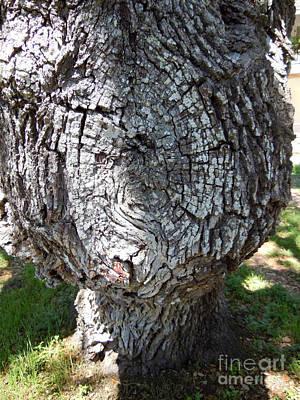 Bobblehead Tree Art Print by Joy Tudor