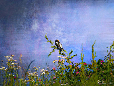 Digital Art - Bobolink Among The Wildflowers by J Larry Walker