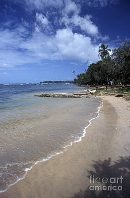 Photograph - Bocas Del Toro Beach Panama by John  Mitchell