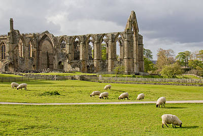 Photograph - Bolton Abbey 1 by Mary Hershberger