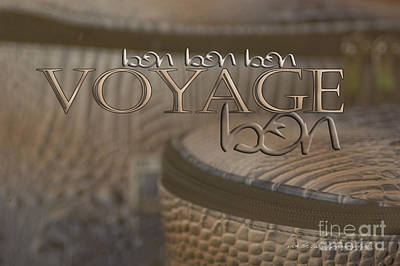 Print featuring the photograph Bon Voyage by Vicki Ferrari Photography