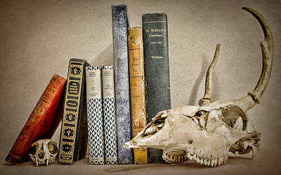 Still Life Photograph - Bone Collector Library by Heather Applegate