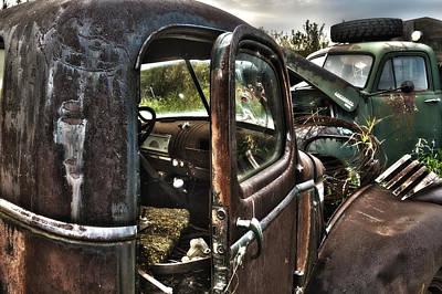 Photograph - Boneyard by Edward Kovalsky