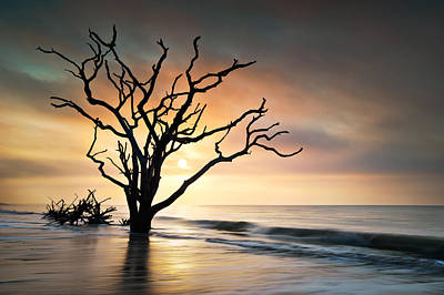 Weather Photograph - Boneyard Sunrise - Botany Bay Edisto Island Sc by Dave Allen