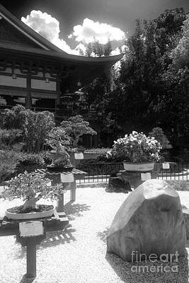 Photograph - Bonsai Garden II by Bonnie Myszka