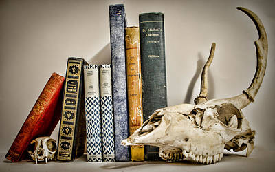 Photograph - Books And Bones by Heather Applegate