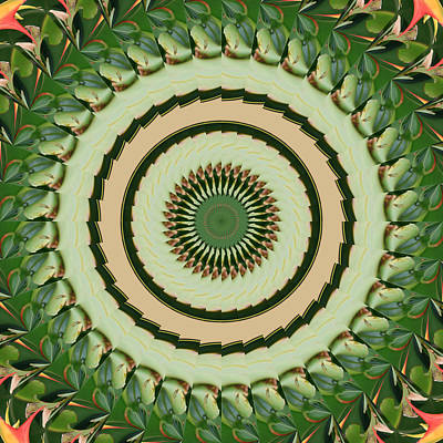 Digital Art - Bop Mandala by Bill Barber