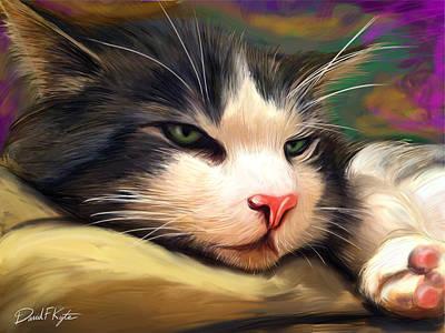Bored Cat Art Print by David Kyte