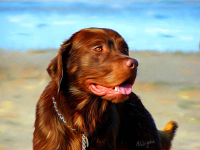 Retriever Digital Art - Bosco At The Beach by Michelle Wrighton