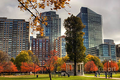 Photograph - Boston Common by Joann Vitali