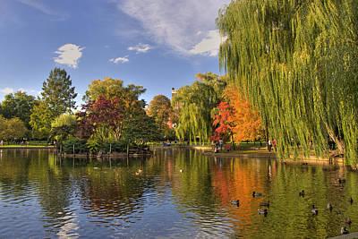 Photograph - Boston Public Gardens by Joann Vitali