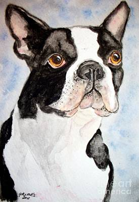 Boston Terrier Art Print by Carol Grimes