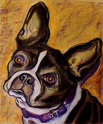 Art Print featuring the painting Boston Terrier by D Renee Wilson
