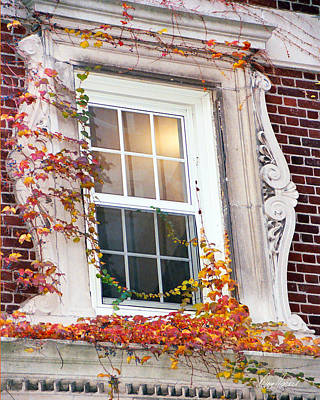 Photograph - Boston Window by Diana Haronis