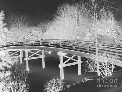 Photograph - Botanical Bridge Invert by David Bearden