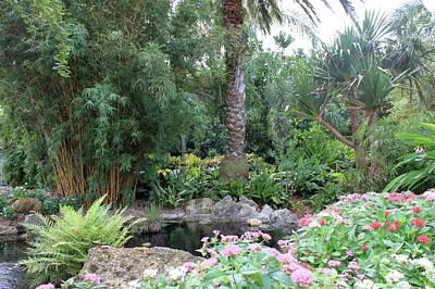 Photograph - Botanical Garden by Jeanne Kay Juhos