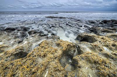 Botany Bay Photograph - Botany Bay Beach Sc by Dustin K Ryan