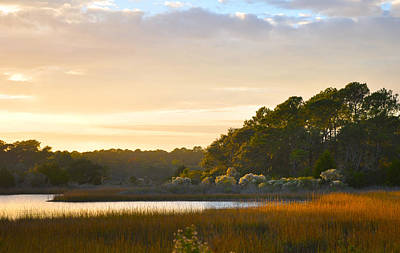 Photograph - Botany Bay Sc Sunset Marsh by Lori Kesten