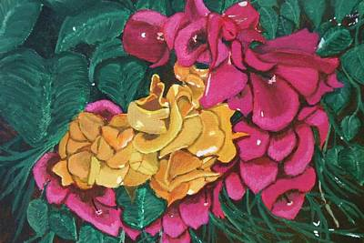 Painting - Bougainvillea by Victoria Rhodehouse