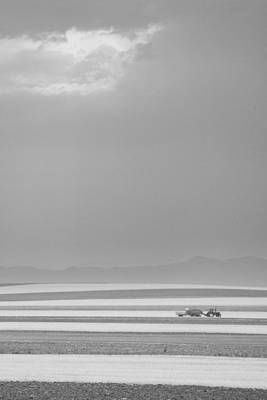 Photograph - Boulder County Colorado Farming Black And White by James BO Insogna