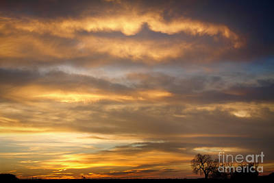 Rustic Photograph - Boulder County Heavenly Sunrise by James BO  Insogna
