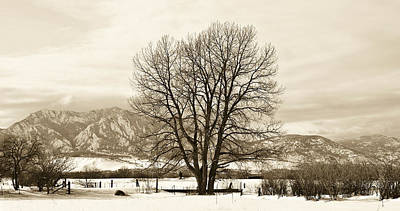 Photograph - Boulder County by Marilyn Hunt