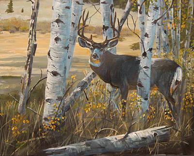 Boulder Mule Deer Original by Scott Thompson