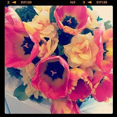 Bouquet Photograph - Bouquet by Janel Erikson