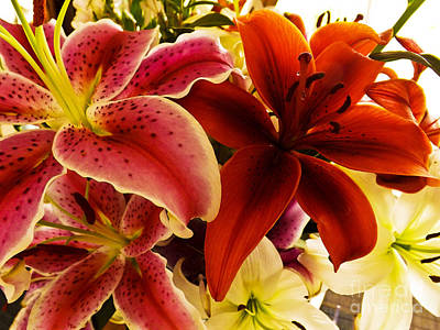 Photograph - Bouquet Of Lillies by Gary Brandes