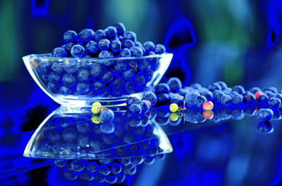 Photograph - Bowl Of Blueberries by Douglas Pike