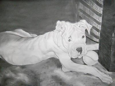 Boxer Pup Art Print by Danielle Shepard