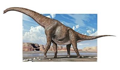 Brachiosaur Photograph - Brachiosaur Dinosaur by Jose Antonio PeÑas