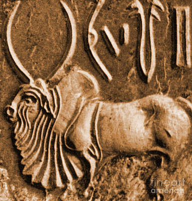 Brahman Bull On Ancient Seal Art Print by Science Source