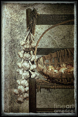 Garlic Digital Art - Braid Of Stinking Roses by Sari Sauls