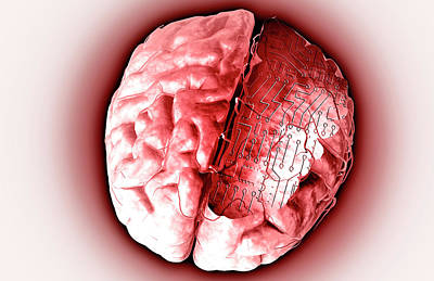 Human Brain Digital Art - Brain With Circuit Board by MedicalRF.com
