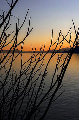 Winter Trees Photograph - Branches In The Sunset by Joana Kruse