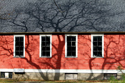 Little Red School House Photograph - Branching Out by Mark J Seefeldt