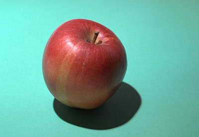 Photograph - Breaburn Apple by Chris Day
