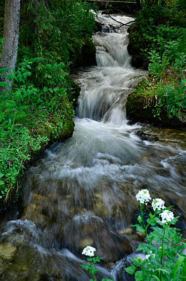 Photograph - Breckenridge Falls by Lynn Bauer