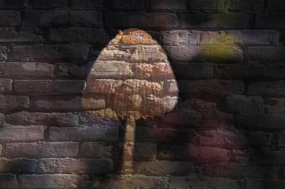 Brick Mushroom Art Print by Eric Liller