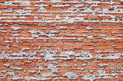 Art Print featuring the photograph Brick Wall With Mortar by Les Palenik