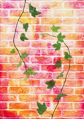 Y120831 Photograph - Bricks With Ivy by sozaijiten/Datacraft