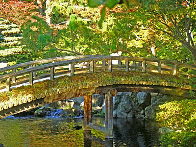 Photograph - Bridge At The Imperial Palace by Roberto Alamino