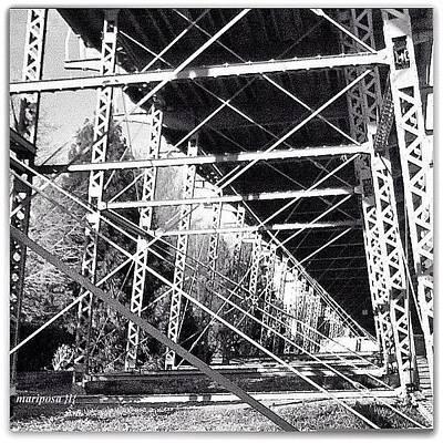 Steel Photograph - Bridge Bones  by Mari Posa