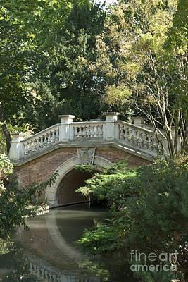 Photograph - Bridge In The Park I by Fabrizio Ruggeri