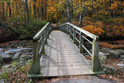 Photograph - Bridge Into Autumn by Kay Novy
