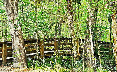 Digitally Created Photograph - Bridge Into The Woods by Carol  Bradley