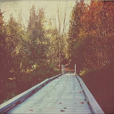 Woodland Wall Art - Photograph - #bridge #nature #autumn #autumntrees by Karen Clarke